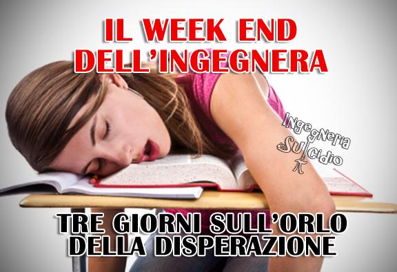 Il week end dell'ingegnera – Tre giorni sull'orlo della disperazione
